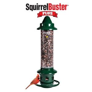 Brome® Squirrel Buster® Plus Birdfeeder