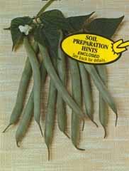 Bean Tenderette 1#