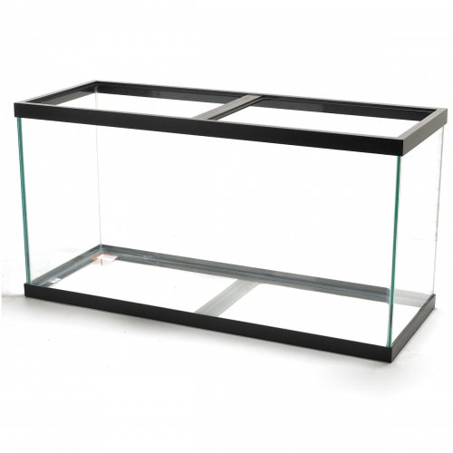 Aqueon® 90 Gallon Black Trim Aquarium