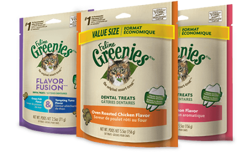 Feline Greenies Dental Treats Ocean Fish - 2.5 oz