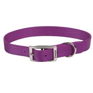 Coastal® Single-Ply Nylon Dog Collar