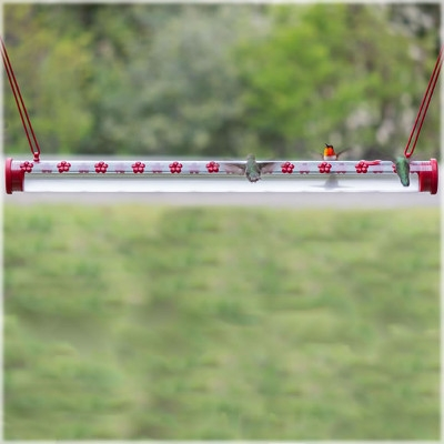 Perky Pet Hummerbar Hummingbird Feeder, 2 ft