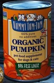 Nummy Tum-Tum Organic Pumpkin