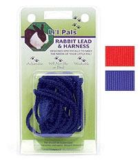 Coastal Rabbit Lead & Adjustable Harness Blue
