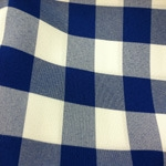 Color Swatch: Blue and White Check