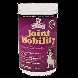 Holistic Health Extension Joint Mobility