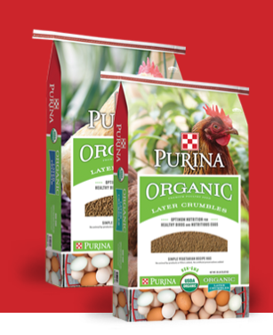 Purina Organic Chicken Feed - Layer Pellets or Crumbles