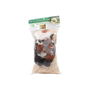 Songbird Essentials Wild Bird Nesting Wreath Refill