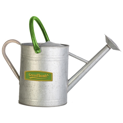 Galvanized Watering Can, 2 Gallons
