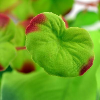 Biorb Medium Aquarium Silk Plant