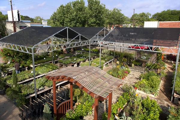 About Shoal Creek Nursery Garden Center In Austin Tx Shoal Creek Nursery Llc