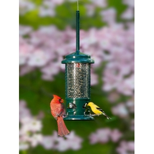 Brome Bird Care Standard Squirrel Buster