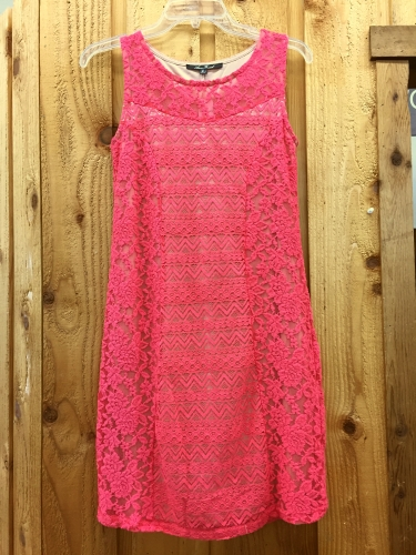 Anne French Coral Lace Form Fitting Dress