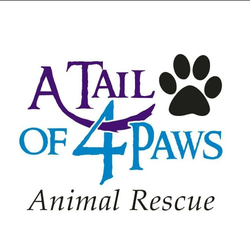 A Tail of 4 Paws Rescue Adoption Day