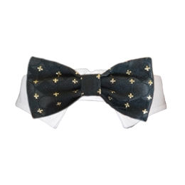 Cameron Bow Tie Collar