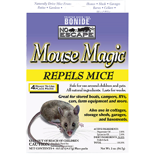 Mouse Magic - 4 count