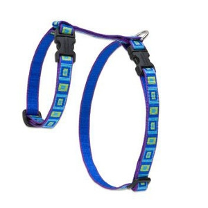 H - Harness for Cats