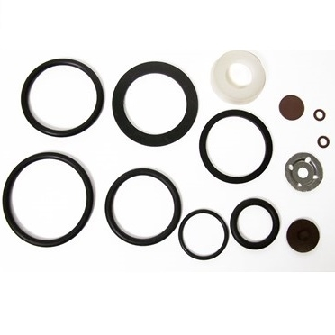 Seal and Gasket Kit