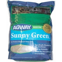 Agway Sunny Green Grass Seed 10lb