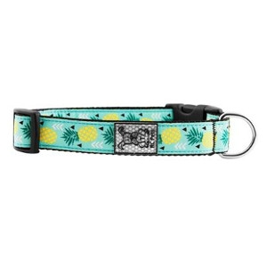 RC Pet Products Clip Collar - Pineapple Parade