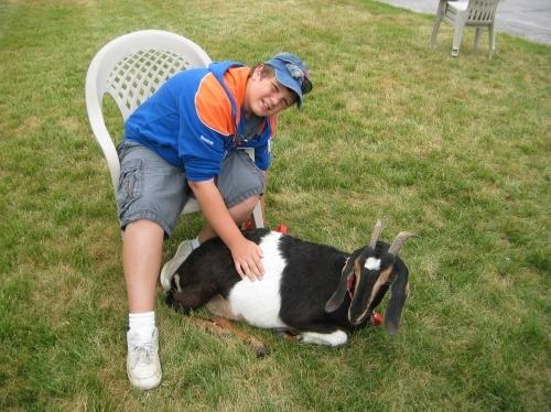 Double D Bar Ranch - Sponsor A Pet Day