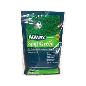 Agway Spot Green Grass Seed 1 Pound