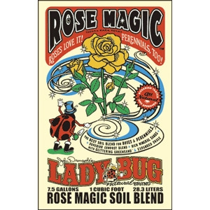 Rose Magic by Lady Bug