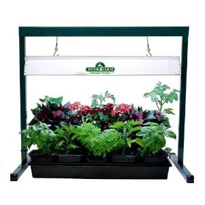 Jump Start 2 Ft. Grow Light System