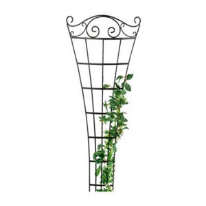 Scroll Fan Trellis
