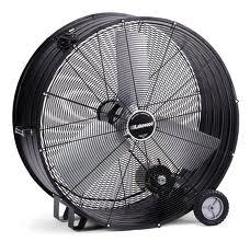 Fan, 42
