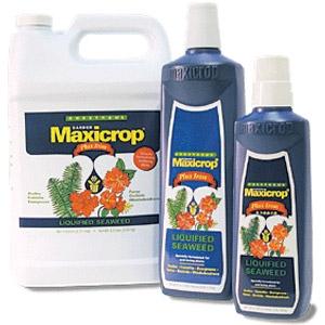 Maxicrop Liquid Seaweed plus Iron
