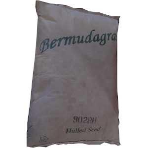 Bermudagrass Seed