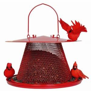 No/No Cardinal Feeder