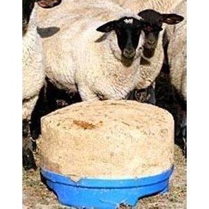SweetPro Sheep Blocks