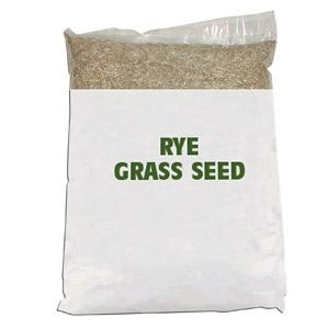 Ryegrass/Gulf Ryegrass Seed