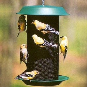 Audubon Magnum Nyjer Seed Birdfeeder