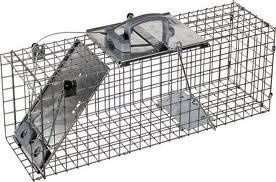 Havahart Large Animal Trap