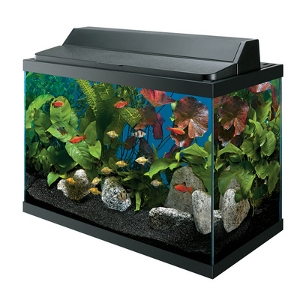 20 Gallon Deluxe Aquarium Kit