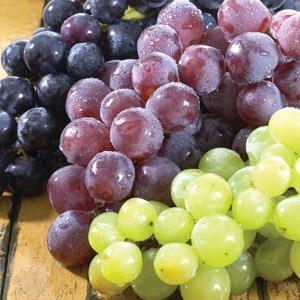Muscadine Grapes