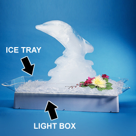 Ice Sculpture Tray