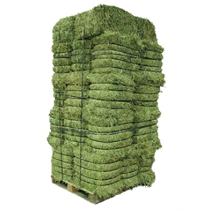Compressed Pure Alfalfa Hay