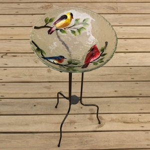Glass Bird Bath Song Birds
