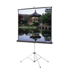 Picture King® Tripod Screen