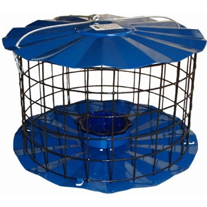 Erva Bluebird Meal Worm Feeder