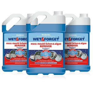 Wet and Forget Moss/Mold/Mildew and Algae Stain Remover