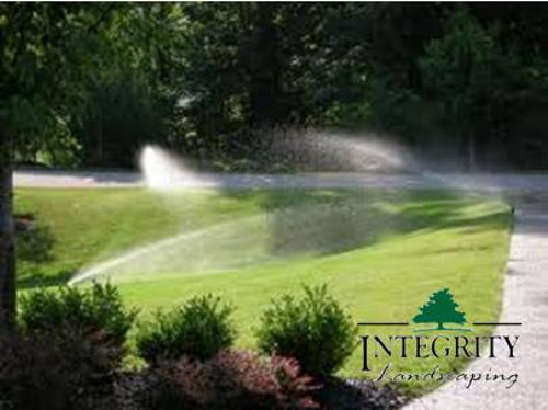 Keeping Your Lawn Healthy