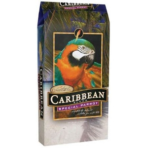 Colorful Companions® Caribbean® Special Parrot