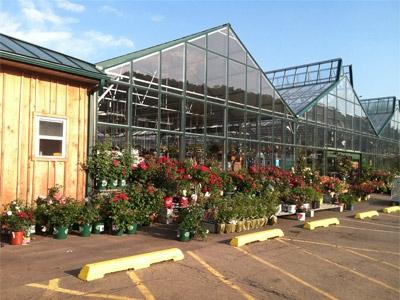 Binghamton Agway's Indoor Greenhouse 2013