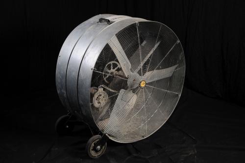 Fan, 4'