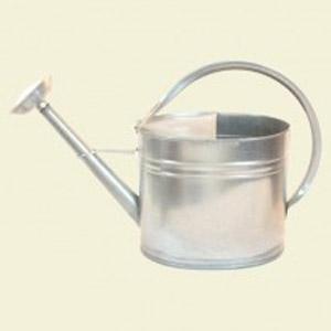 Master Gardener Galvanized Watering Can